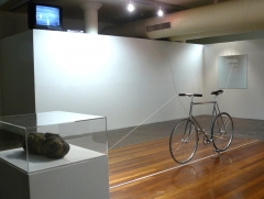 myContrivance installation view